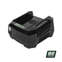Зарядний пристрій Greenworks G82UC